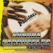 Maestros de la Salsa Dura by La Sonora Carruseles