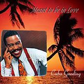 Meant to Be in Love by Cuba Gooding