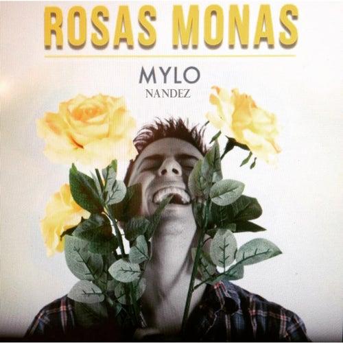 Rosas Monas by Mylo