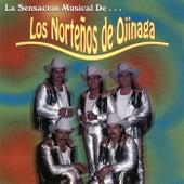 La Sensacion Musical de... by Nortenos De Ojinaga