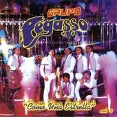 Como una Estrella, Vol. 5 by Grupo Pegasso