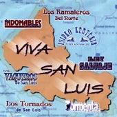 Viva San Luis by Various Artists