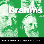 Los Grandes de la Musica Clasica - Johannes Brahms Vol.  3 by Various Artists