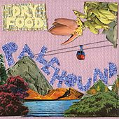 Dry Food by Palehound