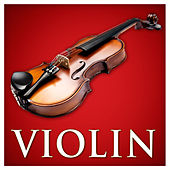 Violin by Various Artists