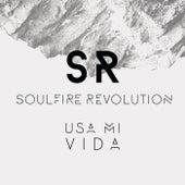 Usa Mi Vida by Soulfire Revolution