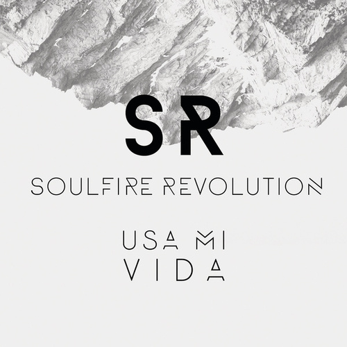 Usa Mi Vida by Soulfire Revolution