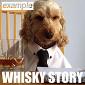 Whisky Story by Example