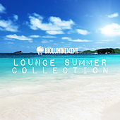 Lounge Summer Collection by Various Artists