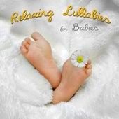 Sleep Baby – Natural Sleep Aid, White Noise for Deep Sleep, Lullabies with Relaxing Nature Sounds, Sleep Through the Night, Calm Music to Fall Asleep by Baby Sleep Sleep