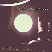 Yellow Cat / You'll Never Miss Your Mama by The Black Twig Pickers