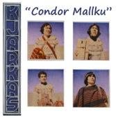 Cóndor Mallku (Bolivia y Su Folklore) by K'Jarkas