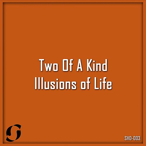Illusions of Life (T.O.A.K Ancestral Mix) by Two Of A Kind