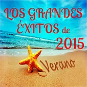 Los Grandes Éxitos De Verano 2015 by Various Artists