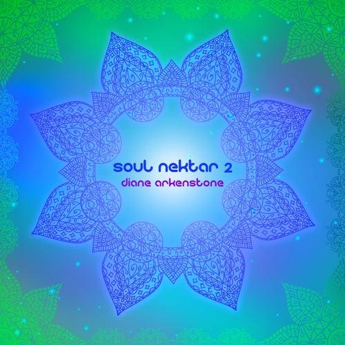 Soul Nektar 2 by Diane Arkenstone
