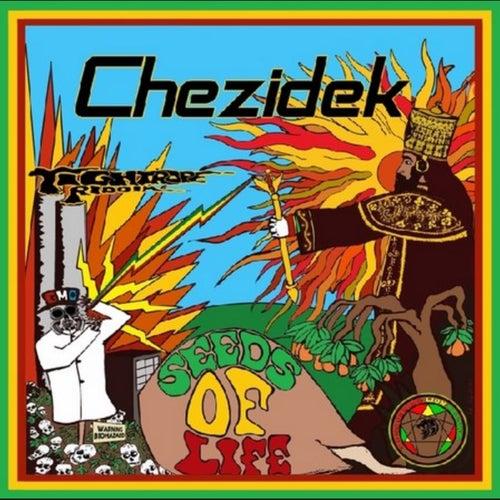 Seeds Of Life - Single by Chezidek