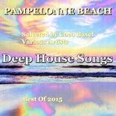 Pampelonne Beach Deep House Songs - Best of 2015 by Various Artists