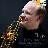 Elegy by Joensuu  City Orchestra