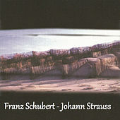 Franz Schubert - Johann Strauss by Various Artists