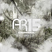 AR15 - Concrete Jungle by Various Artists