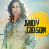 Best Of by Andy Gibson