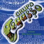 Los Pegamixes by Grupo Pegasso