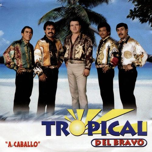 A Caballo by Tropical Del Bravo
