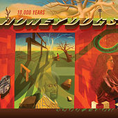 10,000 Years by The Honeydogs