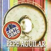 Canta Como - Sing Along: Pepe Aguilar by Mariachi Garibaldi