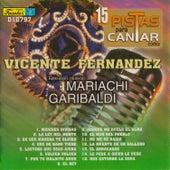 15 Pistas para Cantar Como - Sing Along: Vicente Fernández by Mariachi Garibaldi