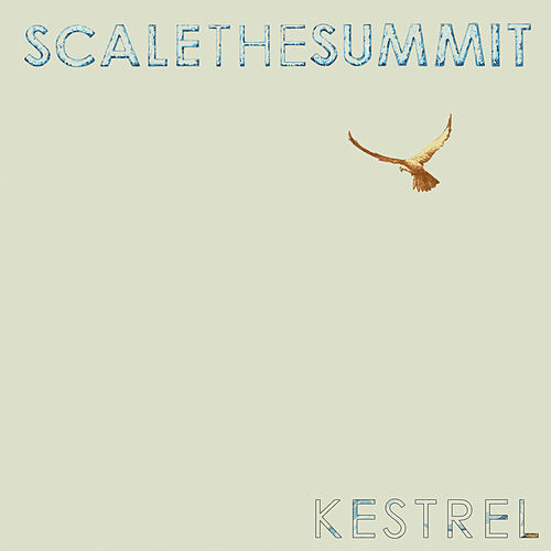 Kestrel by Scale the Summit