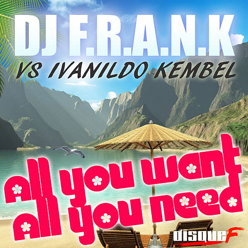 All You Want, All You Need by DJ Frank