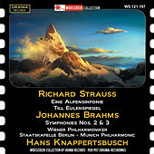 Strauss & Brahms: Orchestral Works by Various Artists