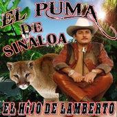 El Hijo De Lamberto by El Puma De Sinaloa