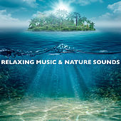 Relaxing Music and Nature Sounds by Various Artists