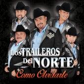 Como Olvidarte by Los Traileros Del Norte