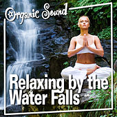 Relaxing by the Water Falls by Organic Sound