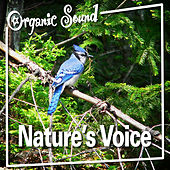 Nature's Voice by Organic Sound