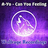 Can You Feeling by Ayo