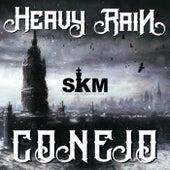 Heavy Rain by Conejo