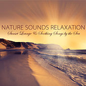 Nature Sounds Relaxation - Guitar Nature Music, Sunset Lounge & Soothing Songs by the Sea by Sounds of Nature White Noise for Mindfulness Meditation and Relaxation BLOCKED