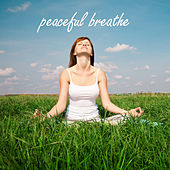 Peaceful Breathe by Various Artists