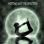 Moonlight Meditation by Various Artists