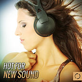 Hot for New Sound by Various Artists