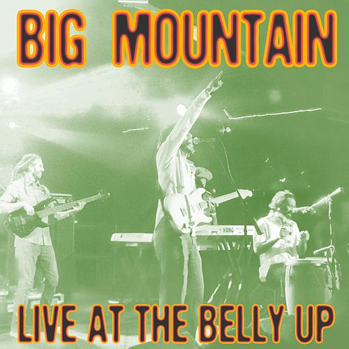 Live at the Belly Up by Big Mountain