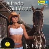 El Pajonal by Alfredo Gutierrez