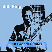 18 Grandes Éxitos by B.B. King
