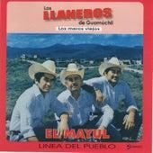 El Mayul by Los Llaneros De Guamuchil