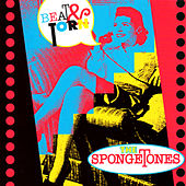 Beat & Torn by The Spongetones