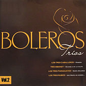 Boleros Tríos, Vol.2 by Various Artists